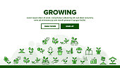istock Growing Money Plant Landing Header Vector 1210030353