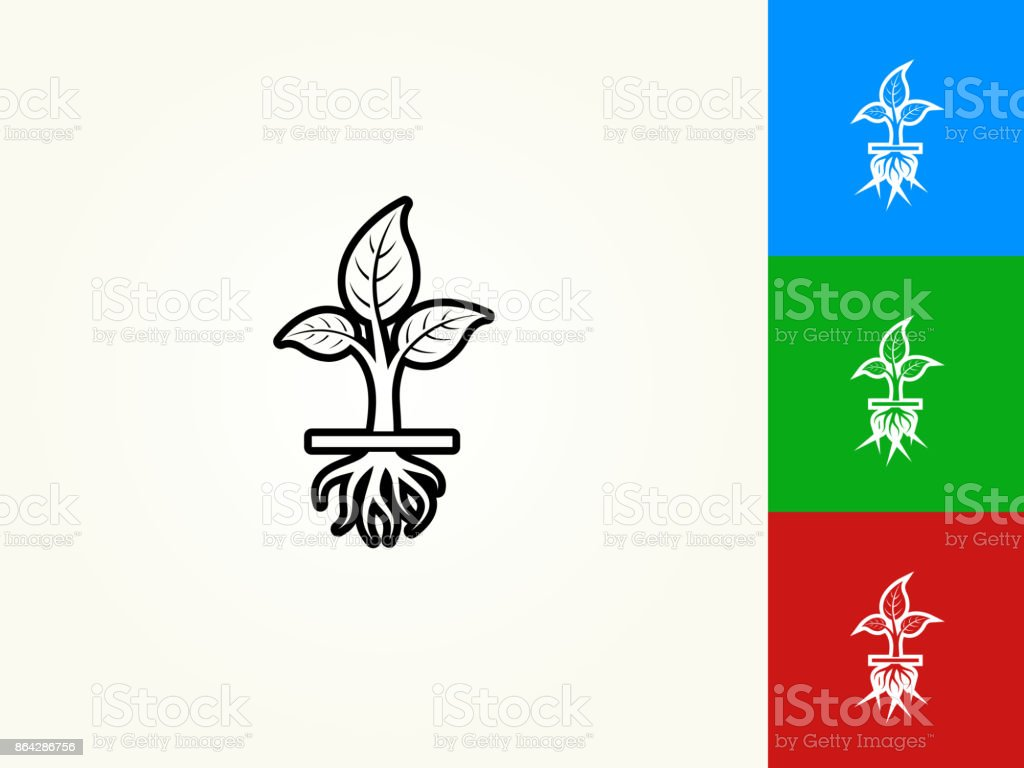 Growing Plant Black Stroke Linear Icon royalty-free growing plant black stroke linear icon stock vector art & more images of black color