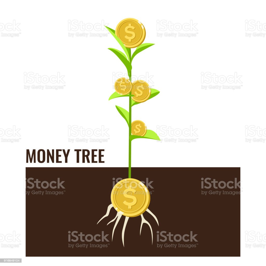 Growing plant on row of coin money for finance and banking concept vector art illustration