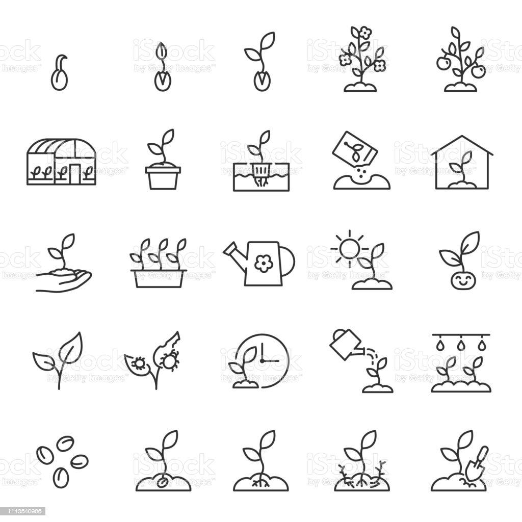 Groeiende planten. Spruit in de grond. Landbouw en tuinieren, icon set. Spruit zorg, lineaire iconen. Plant in de grond, broeikasgassen en hydrocultuur systemen. Bewerkbare lijn - Royalty-free Blad vectorkunst
