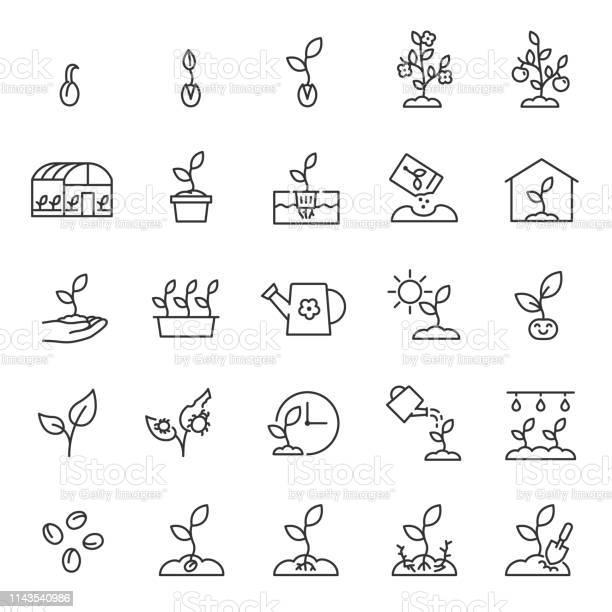 Groeiende Planten Spruit In De Grond Landbouw En Tuinieren Icon Set Spruit Zorg Lineaire Iconen Plant In De Grond Broeikasgassen En Hydrocultuur Systemen Bewerkbare Lijn Stockvectorkunst en meer beelden van Blad