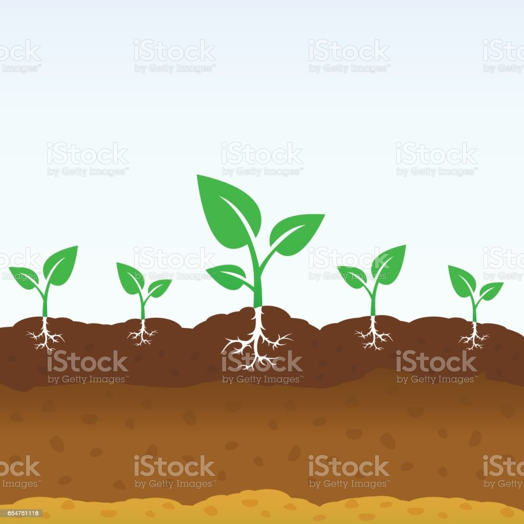 Growing shoots out of the ground vector art illustration