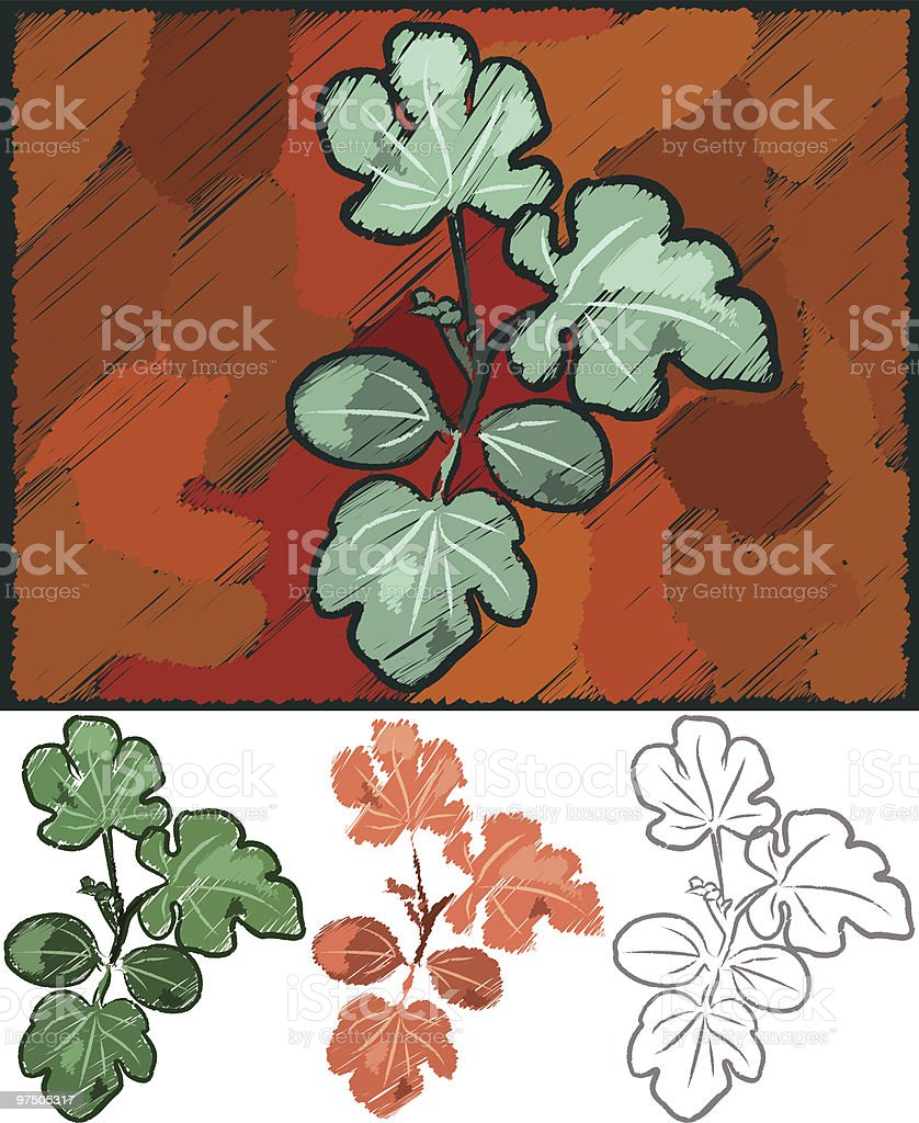 Growing Squash Plant royalty-free growing squash plant stock vector art & more images of art