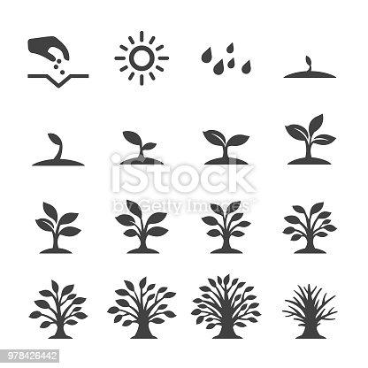 Growth, Tree,