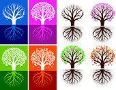 Growing Tree Seasonal icon set with Colors