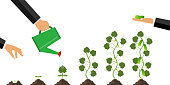 Growth of the plant from germination to maturation. The concept of planting and caring for the plant. Cultivation of cucumber. Phases of growth of a cucumber. Flat design, vector illustration, vector.