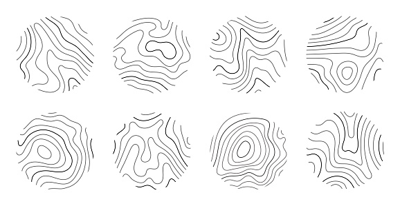 Growth rings of a tree. Wood stump line design. Vector illustration