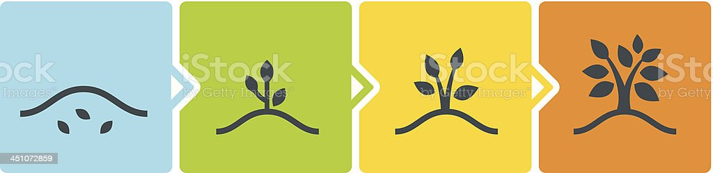 Growth Stages vector art illustration
