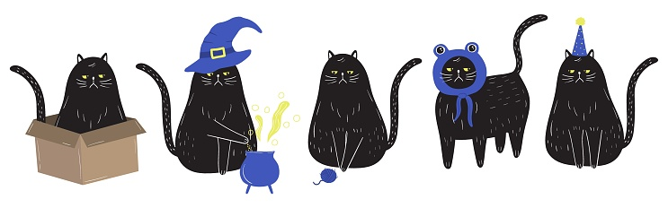 Grumpy black cat set