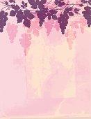 istock Grunge Grapes Wine Background 187709495
