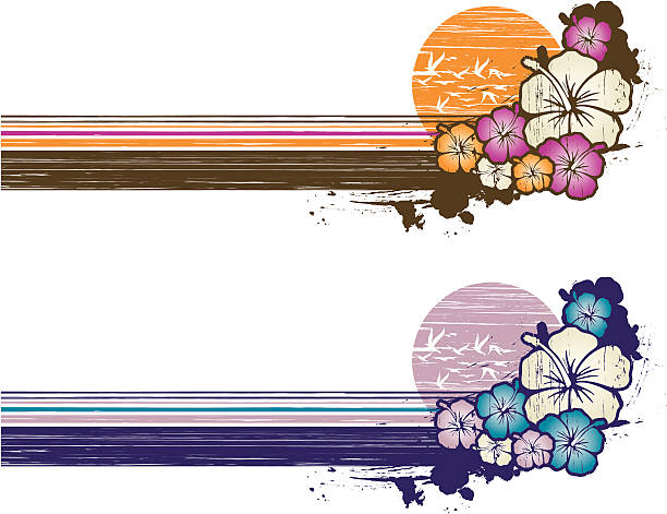 grunge hibiscus banner Two vintage colors models of a summer horizontal composition with hibiscus, grunge technique beach borders stock illustrations