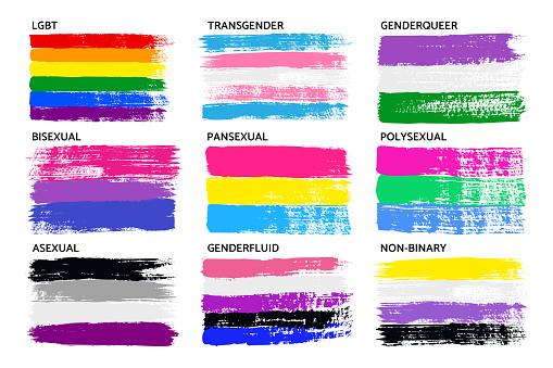 Grunge LGBT Pride Flag Collection Lesbian, Gay, Bisexual, Pansexual, Genderfluid, Genderqueer, Polysexual . Vector