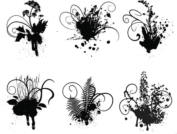 Grunge plants Bw patterns with different plants and ink blots.  iris plant stock illustrations