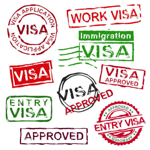 Grunge rubber visa stamps Grunge rubber visa stamps. Vector illustration in bright colours isolated on a white background. airport borders stock illustrations