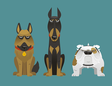 Guard Dog Set