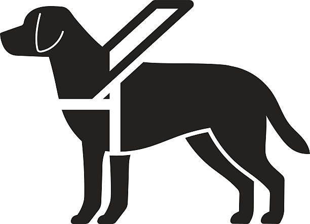 How To Get A Seeing Eye Dog