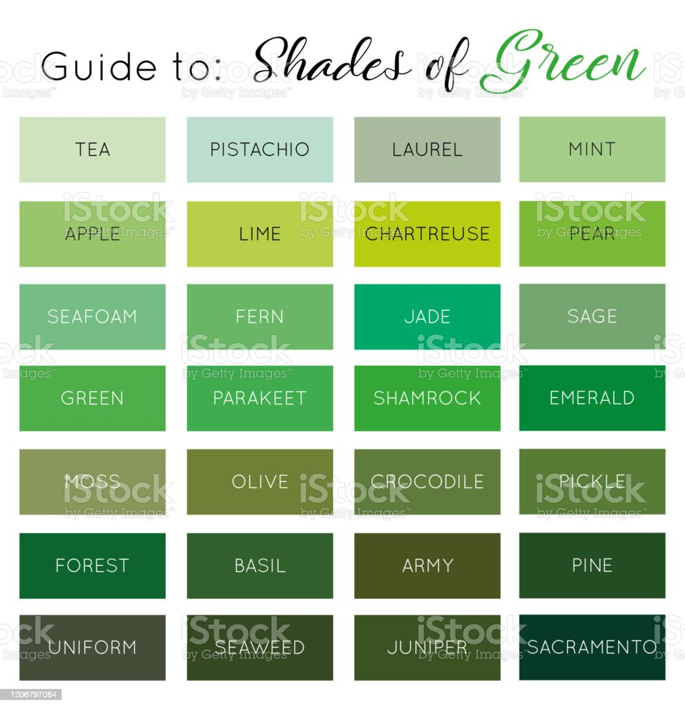Guide To Shades Of Green Vector Stock Illustration Download Image Now Istock