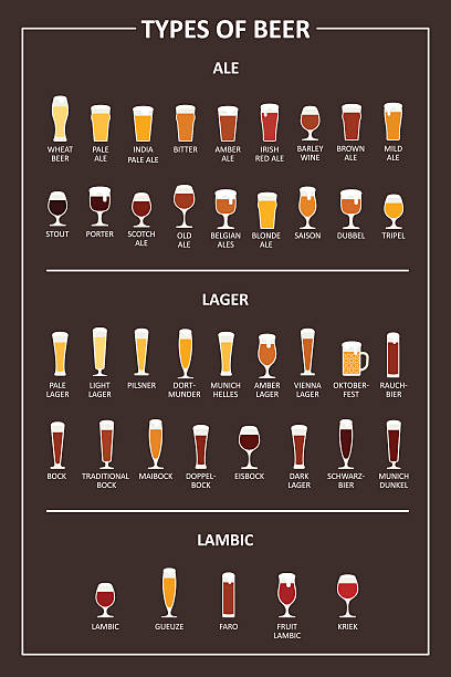 Guide to the types of beer. Vector illustration vector art illustration