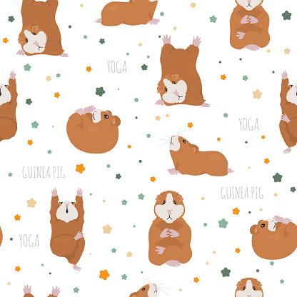 Guinea pig yoga poses and exercises. Cute cartoon seamless pattern