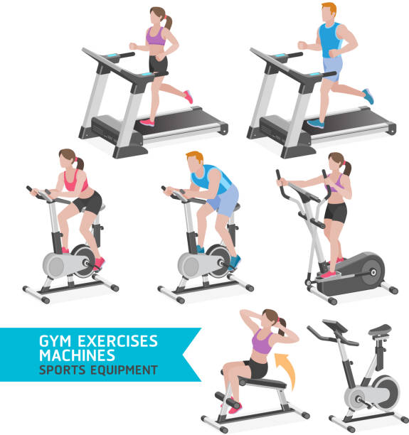 Gym exercises machines sports equipment. - Illustration vectorielle