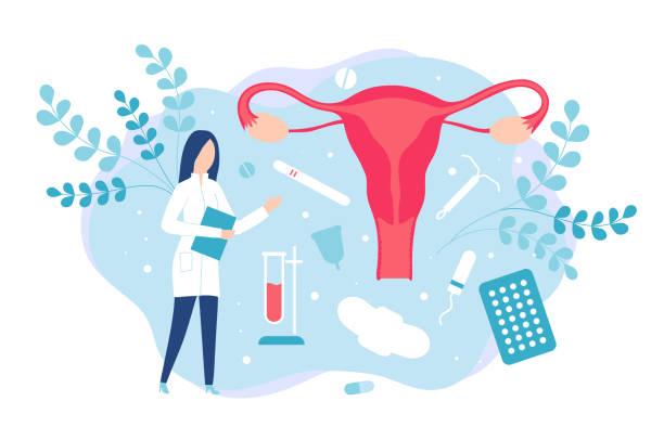 illustrations, cliparts, dessins animés et icônes de gynécologie et santé des femmes. consultation avec un gynécologue ou un reproductologue - planning familial