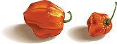 Hot peppers. Gradient mesh.