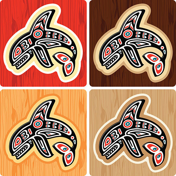 Haida style Killer Whale A vector illustration of an orca whale using a haida-inuit artistic style over differently colored wood textures. The wood texture is complete so you can use it by itself. No gradients. killer whale stock illustrations