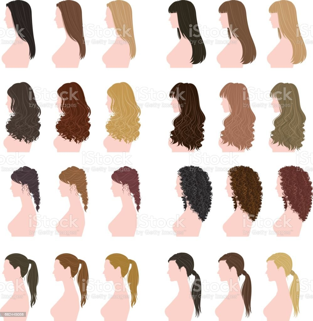 Hairstyle of the woman vector art illustration