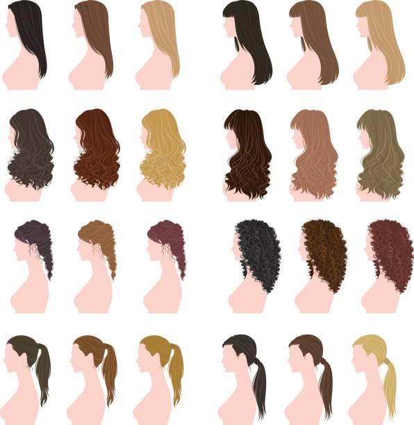 ilustraciones, imágenes clip art, dibujos animados e iconos de stock de peinado de la mujer - cabello largo