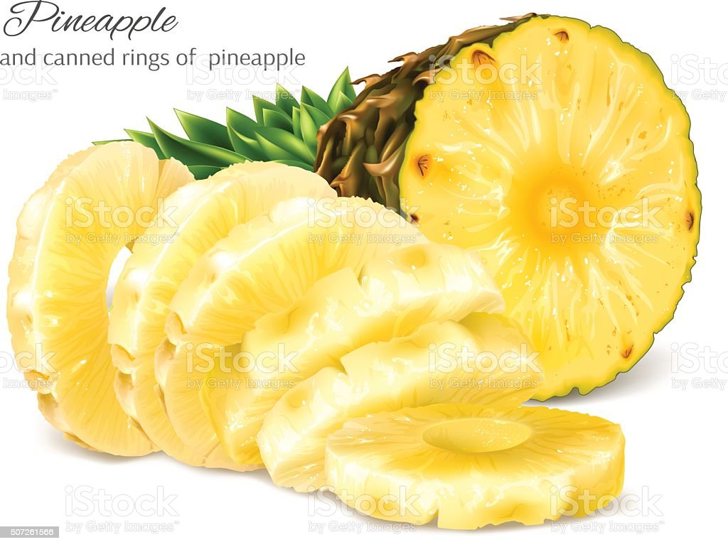 Half cut and canned sliced pineapple. vector art illustration