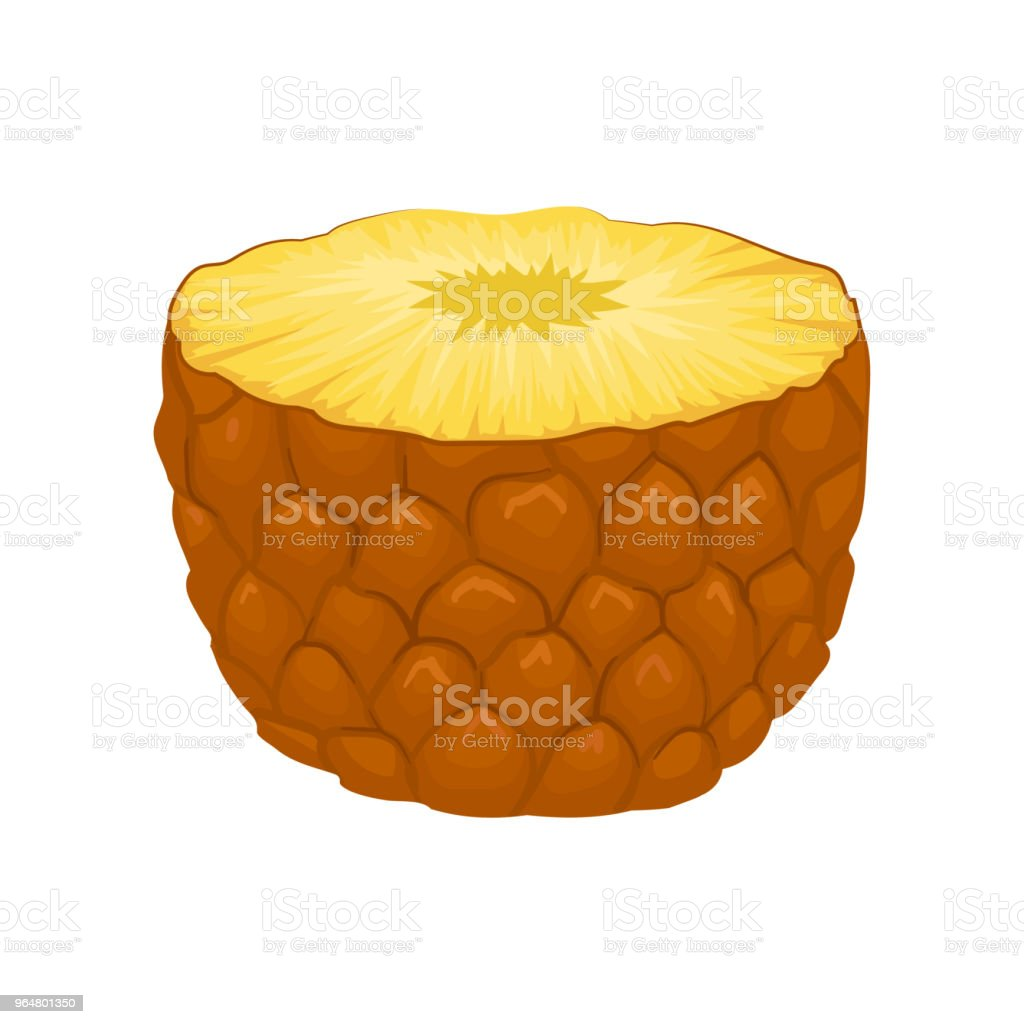 Half of juicy pineapple. Delicious tropical fruit. Detailed flat vector element for promo poster, banner or flyer royalty-free half of juicy pineapple delicious tropical fruit detailed flat vector element for promo poster banner or flyer stock vector art & more images of cartoon