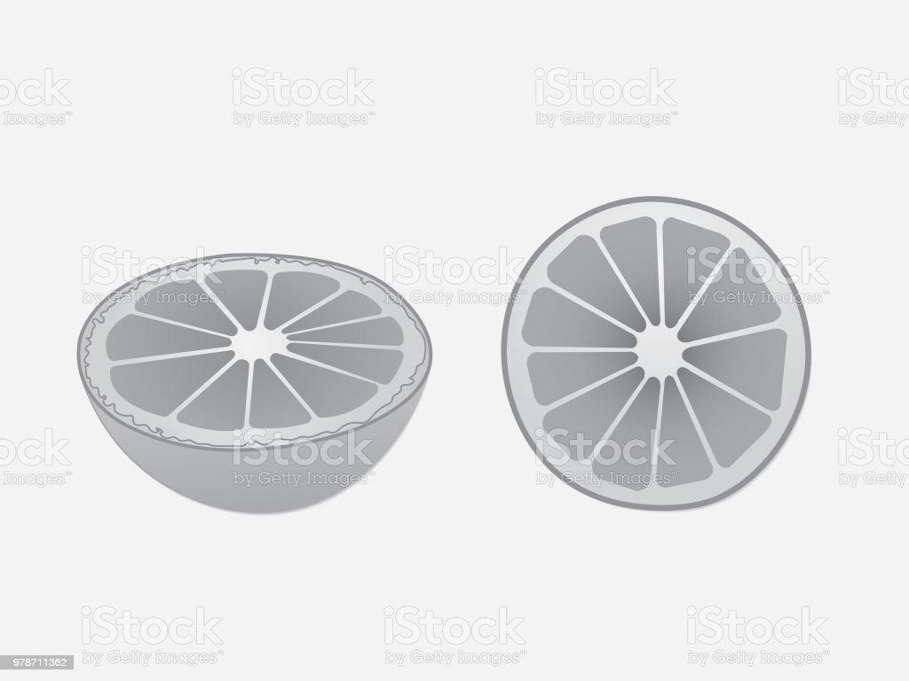 Ilustración De La Mitad En Rodajas Fruta Naranja Blanco Y