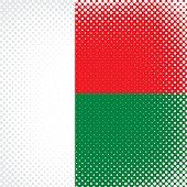 Half Tone Flag - Madagascar