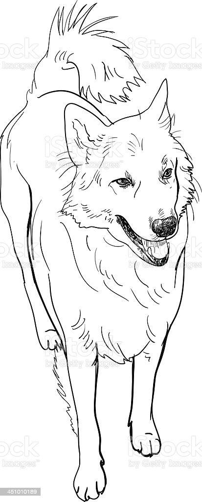 Half-breed dog royalty-free stock vector art
