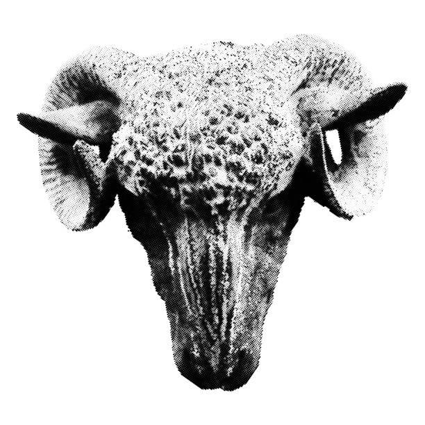 Halbton Ram Kopf isoliert auf weißem Hintergrund. Frontansicht – Vektorgrafik