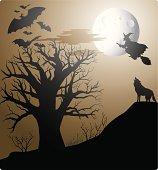 A halloween scary night