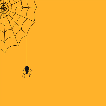 Halloween background with a spider and a web. Vector illustration