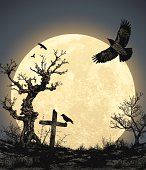 Halloween Background with Full Moon
