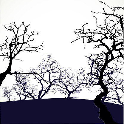 Halloween background with scary trees