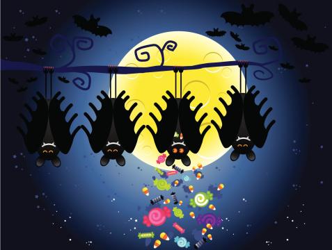 halloween bat hiding candy