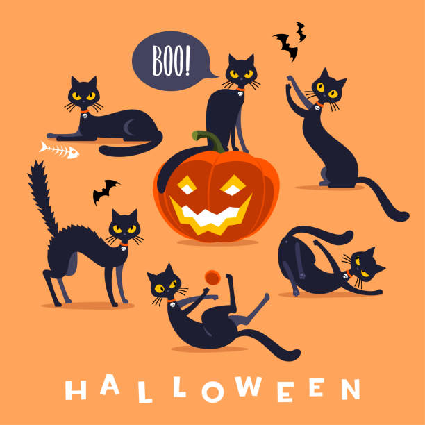 Halloween black cat character Funny Halloween black cat isolated in different poses. halloween cat stock illustrations