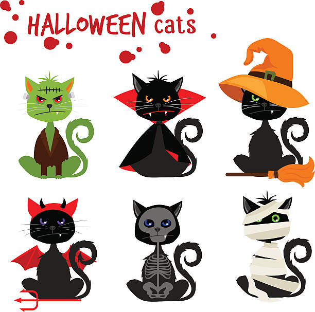 Halloween black cat fashion costume outfits Halloween black cat fashion costume outfits. Dead cat skeleton and mummy pussy cat , zombie kitty and vampire cat vector illustration isolated on white cat skeleton stock illustrations
