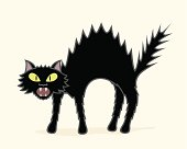 A vector illustration of a bristling black cat.  Cat and background/shadow are on separate layers.  Both CS .ai and AI8-compatible .eps files are included.  No gradients or blends whatsoever.