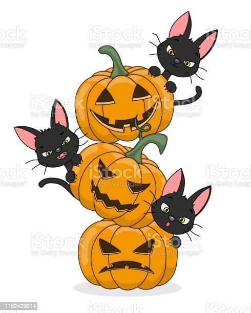Halloween card black cats and pumpkins vector id1162429814?b=1&k=6&m=1162429814&s=612x612&h=3giodj xoacpuvlnuvlye zxf1tc9qffw3rtyirifvs=