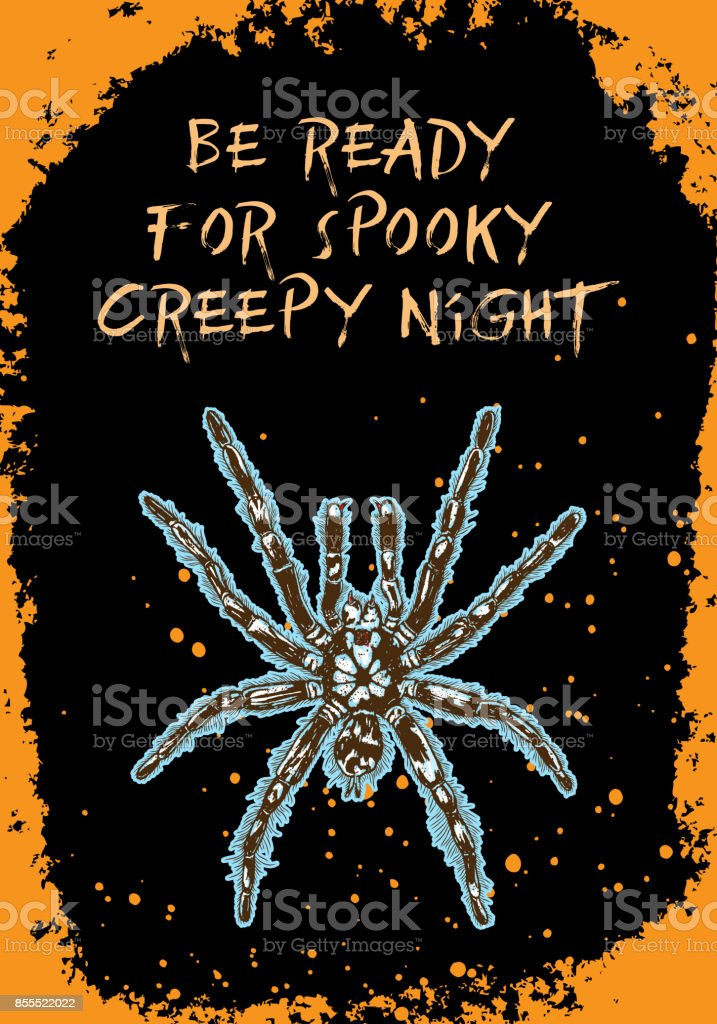 Halloween card of poison spider on black background and orange hand drawn frame with sparkles. Vector. vector art illustration