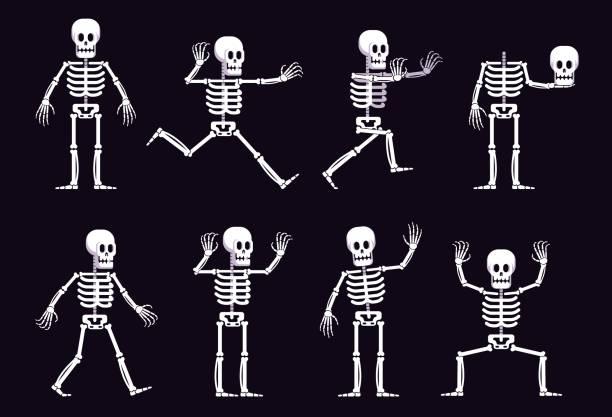 Bекторная иллюстрация Halloween cartoon skeleton in different position