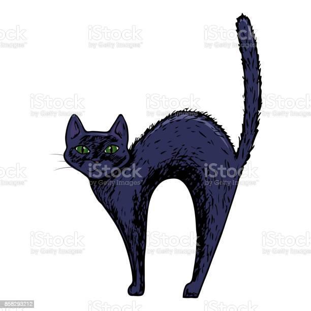 Halloween cat illustration vector id858293212?b=1&k=6&m=858293212&s=612x612&h=v 0w3awpeaaqvyiw4wzeu9jdcqbsgnhjh0srl8w4zek=