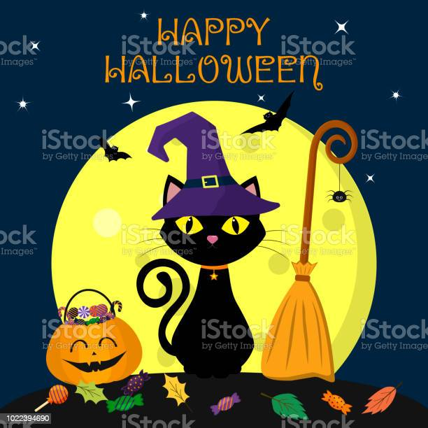 Halloween cat in a witch hat sits against a full moon at night near vector id1022394690?b=1&k=6&m=1022394690&s=612x612&h=1ox1vqpjtb59yotl1026uvewumrukw vxkz9ugkqrea=