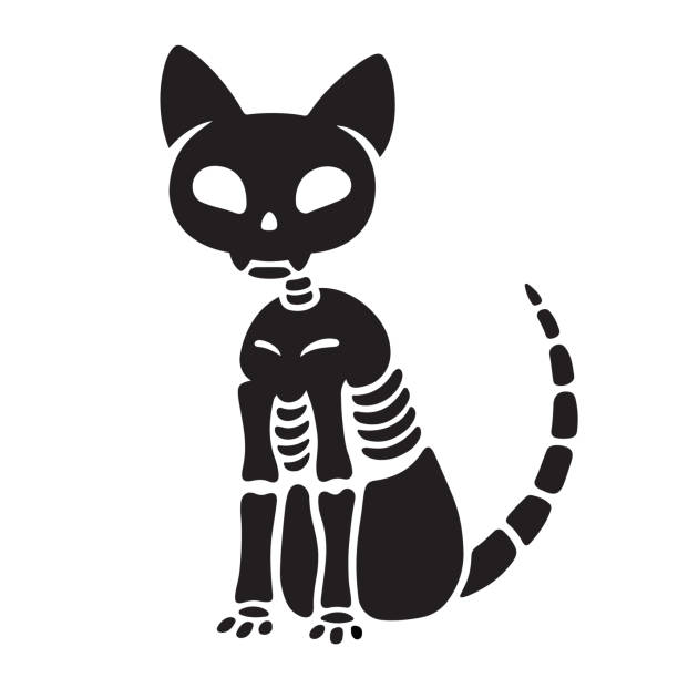 Halloween cat skeleton Spooky black and white cat skeleton drawing. Creepy Halloween kitty vector illustration. cat skeleton stock illustrations