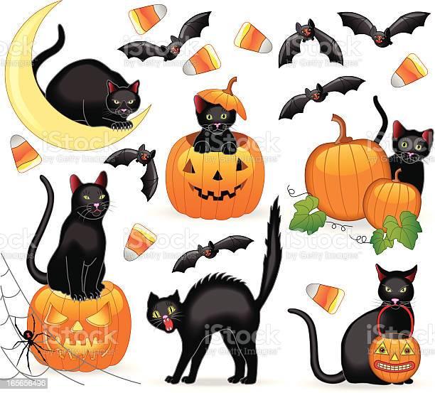 Halloween cats vector id165656496?b=1&k=6&m=165656496&s=612x612&h=glz9m5qhgosdeulvkrqxtf 6x khye3qtok9hdjm0we=